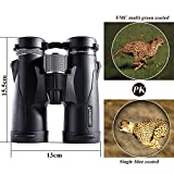 NOCOEX 10x42 HD Roof Prism Compact Binoculars, Water, Fog and Shock Proof, Suitable for Bird Watching, Stargazing and Hunting, Black
