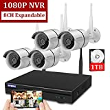 Best Surveillance Systems - Wireless 8-Channel 1080P Security Camera System with 4pcs Review