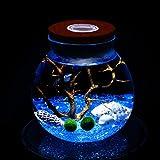 LED水族館Marimoキット - 2つのアクアティックモスボールの青いガラスの小石のファンのサンゴの枝と貝殻のオフィスのデスクの装飾テーブルセンターピースユニークな誕生日プレゼント