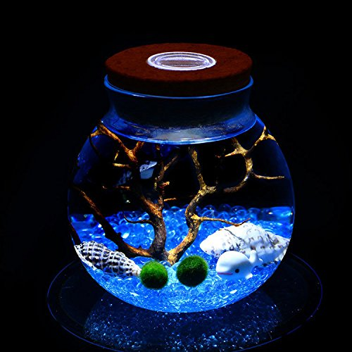 sea fan table lamp - 5