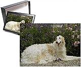 Photo Jigsaw Puzzle of Borzoi / Russian Wolfhound