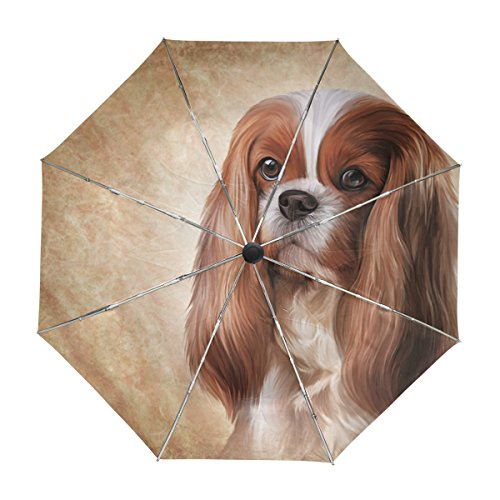 Spaniel Umbrella - ALAZA Cavalier King Charles Spaniel Dog Travel Umbrella Auto Open Close UV Protection Windproof Lightweight Umbrella