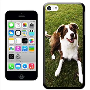 Fancy A Snuggle 'Border Collie Dog Brown and White' Hard Case Clip On Back Cover for Apple iPhone 5C 1
