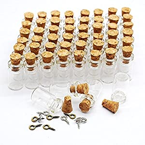 51r0omsZJHL._SS300_ Large & Small Glass Bottles With Cork Toppers
