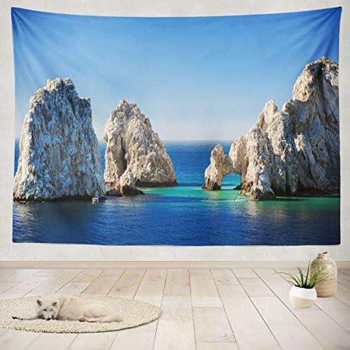 Asoco Tapestry Wall Hanging Giant Natural Famous Natural for sale  Delivered anywhere in Canada