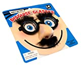 Best Glasses With Nose Eyebrows - Nerd Disguise Glasses, Bug Eyes with nose, mustache Review