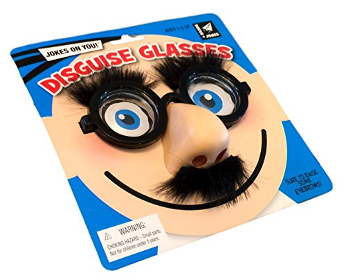 Nerd Disguise Glasses, Bug Eyes with nose, mustache and (Owl Glasses Costume)