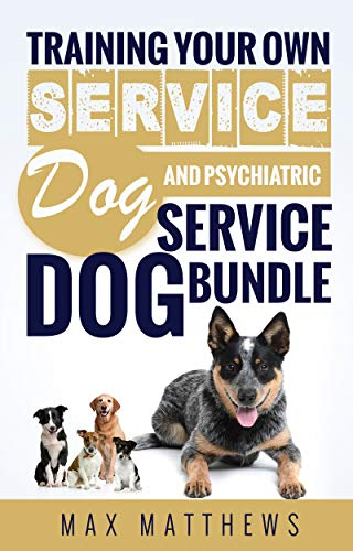Service Dog Training Your Own Service Dog And Training Your Own
