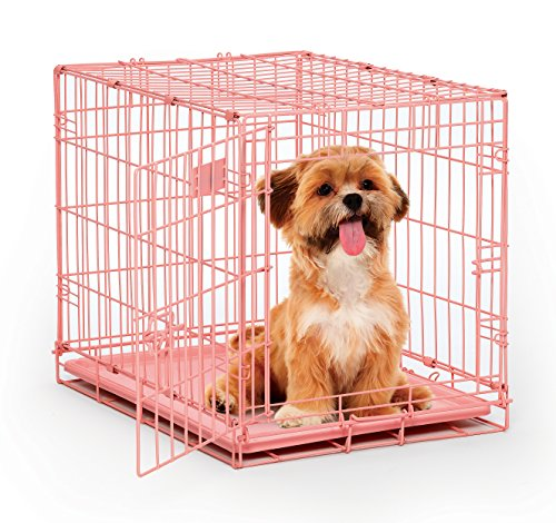 Pink Dog Crate | MidWest iCrate 24