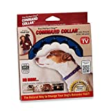 The Perfect Dog™ Command Collar® Small Dog Training System