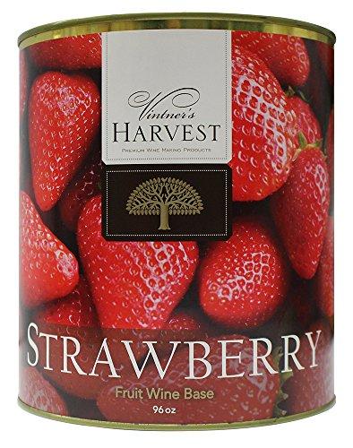Strawberry (Vintner's Harvest Fruit Bases)