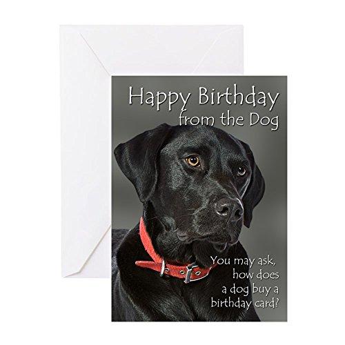 CafePress From The Black Lab Birthday Card Greeting Card, Note Card, Birthday Card, Blank Inside Matte (Retriever Card Labrador Birthday)
