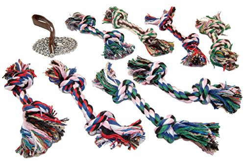 Chew Rope Bundle PLUS For Dogs | Tug Teething Training Aids | Guaranteed | 3.5' Chain Leash | Double Knotted | Multi-Color Fetch & Retrieve Rope Toy | Interactive | ()