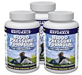 Blood Pressure Support / All Natural Blood Pressure Supplement (3 bottles/360 Capsules/180 Day Supply)