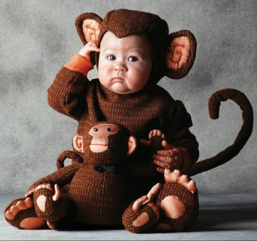 [TOM ARMA MONKEY 4T-5T TODDLER] (Tom Arma Monkey Costumes)