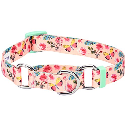 Blueberry Pet 7 Patterns Spring Scent Inspired Rose Print Safety Training Martingale Dog Collar, Pastel Pink, Medium, Heavy Duty Adjustable Collars for Dogs