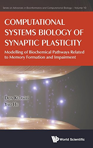 Computational Systems Biology of Synaptic Plasticity: Modeling of Biochemical Pathways Related to Memory Formation and I