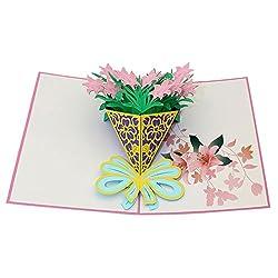 Newkelly Office Supply NO NO 3D Pop Valentine Lover Happy Birthday Anniversary Greeting Cards, Medium, Multicolor