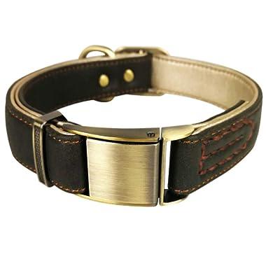 Fourhorse Basic Classic Luxury Padded Leather Dog Collar,The Seatbelt Buckle,for Large Medium Small Pets