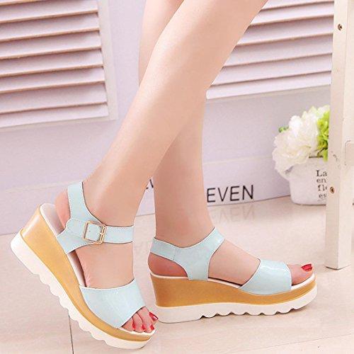 Sandalen, Yogogo Sommer Sandalen Schuhe Peep-Toe High Schuhe Römische Sandalen Damen Flip Flops Blau