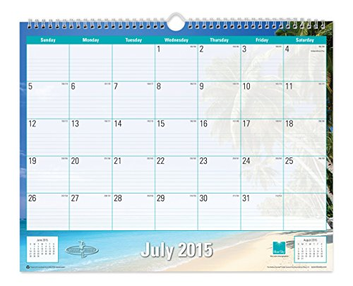 Blue Sky 2015-2016 Academic Year Wall Calendar, Endless Summer Collection, Wire-O Bound, 15 x 12 Inches (17085)