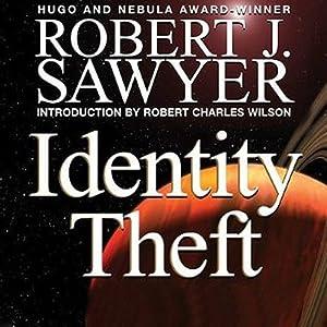 Identity Theft Hörbuch
