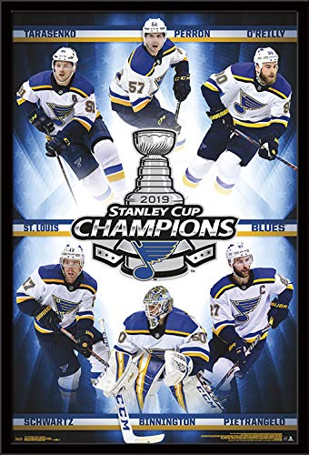 (Trends International 2019 Stanley Cup - Champions Wall Poster, 24.25