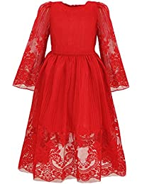 Girl's Classy Embroidery Lace Maxi Flower Girl Dress