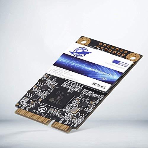 (Dogfish Msata 16GB 32GB 60GB 64GB 120GB128GB 240GB 250GB 480GB 500GB Internal Solid State Drive Mini Sata SSD Disk (500GB))