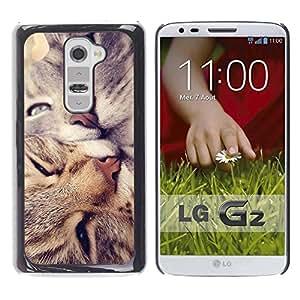 Be Good Phone Accessory // Dura Cáscara cubierta Protectora Caso Carcasa Funda de Protección para LG G2 D800 D802 D802TA D803 VS980 LS980 // American Shorthair Curl Cats Kiss Love