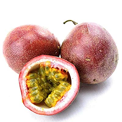BLagenertJ Purple Passiflora Delicious Fruit Seeds, Home Garden Outdoor Planting, Decor Fruit Plant Seeds - 100 Pcs 100 Pcs : Garden & Outdoor