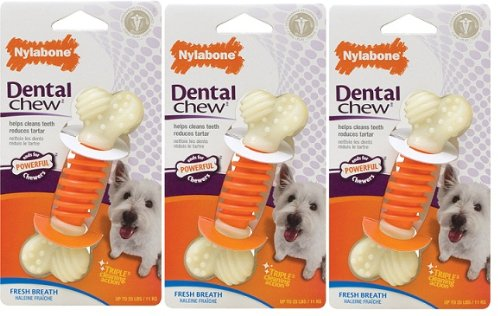 Nylabone Dental PRO Action Chew Bacon Small 3 pk, My Pet Supplies