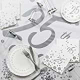 Large Sparkle and Shine Silver Deluxe 25th Anniversary Party Supplies Kit