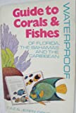 Waterproof Guide to Corals and Fishes : Of Florida, the Bahamas, and the Caribbean, Greenberg, Idaz, 0913008079
