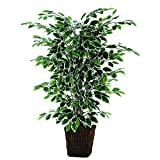 Vickerman 4' Artificial Variegated Focus Bush in Square Willow