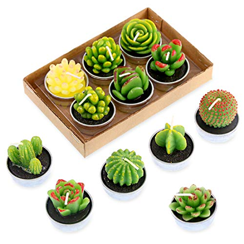 Swpeet 12Pcs Decorative Succulent Cactus Tealight Candles Kit, Cute Smokeless Succulent Plants Perfect for Candles Festival Wedding Props and House-Warming Party by Swpeet