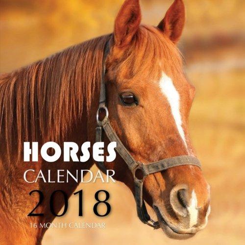 Horses Calendar 2018: 16 Month Calendar