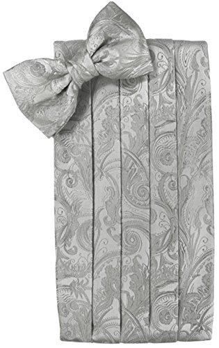 Silver Cummerbund Set (Cardi Men's Tapestry Paisley Bowtie and Cummerbund Set, Platinum)