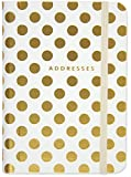 img - for Gold Dots Address Book book / textbook / text book