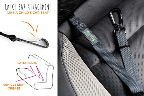 Mighty Paw Safety Belt, Dog Seat Belt, Heavy Duty Hardware Including Tangle-Free Swivel Attachment, Carabiner, and Latch Bar Attachment. (Grey)