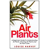 Air Plants: A Beginners Guide To Understanding Air Plants, Growing Air Plants and Air Plant Care (Air Plants, Ornamental Plants, House Plants)