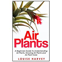Air Plants: A Beginners Guide To Understanding Air Plants, Growing Air Plants and Air Plant Care