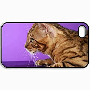 Fashion Unique Design Protective Cellphone Back Cover Case For iPhone 4 4S Case Cats Domestic Bengal Cats Black