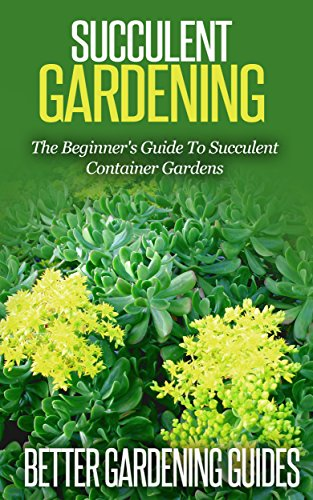 Succulent Gardening The Beginner S Guide To Succulent Container