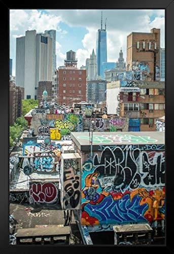 Lower Manhattan and China Town Rooftop Graffiti Framed Poster 20x14 ()