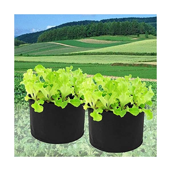 YuYzHanG Borse per Piante Orto di Controllo Radice Crescere Cresciuto Letto di Impianto Planter Herb Flower Bag Sacchi… 2 spesavip