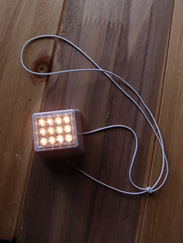 Led Paper Lantern Light With 12 Super Bright White Leds in Florida - 2