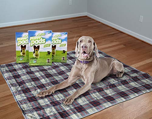 Washable Pee Pads for Dogs for Indoor Potty Training & Easily Reusable. designed for Pet Training & Incontinence. Extra Large Mat That Is Waterproof. Great for Travel. 32 x 33
