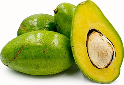 Avocado – Sunset Groves – Farm to Table – Picked Fresh – 4 Count by Sunset Groves (Image #1)