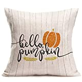 Royalours umpkin Pillow Cover Hello Pumpkin Quote Decorative Cotton Linen Throw Pillow Cover for Thanksgiving Fall Harvest Home Decor 18